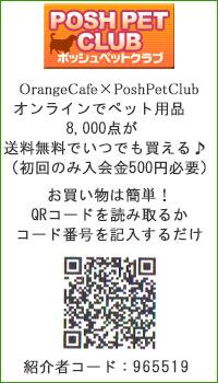 OrangeCafe×PoshPetClub