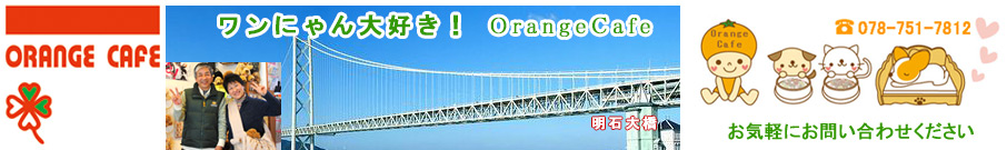 OrangeCafe実店舗へようこそ